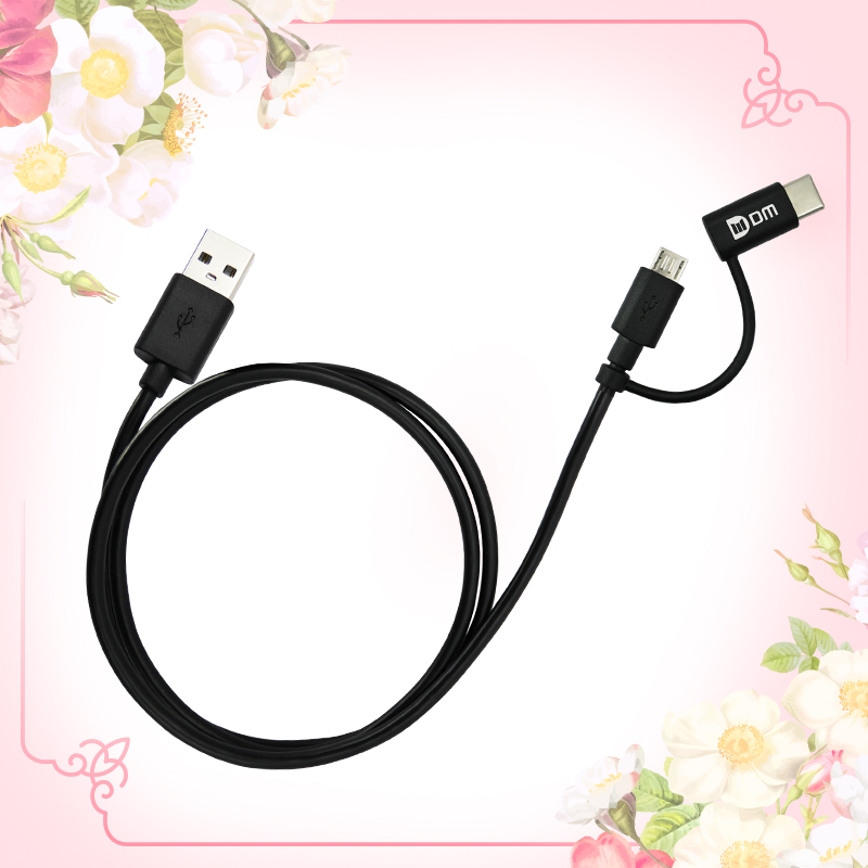 2 in 1 Type C & Micro USB Cable